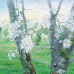 blomstrende æbletræ 100x80 af kunstmaler Birgitte Nielsen