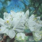 blommeblomster, akvarel af kunstmaler Birgitte NIelsen