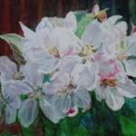 æbleblomster, akvarel af kunstmaler Birgitte NIelsen