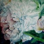 peon, akvarel af kunstmaler Birgitte NIelsen